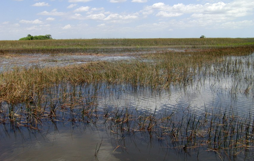 Video: USA - Everglades - Airboat
